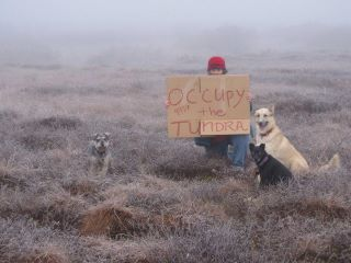 Occupy the tundra